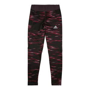 ADIDAS PERFORMANCE Sportovní kalhoty  lilek / purpurová / pink