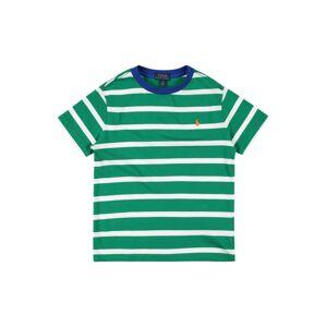 POLO RALPH LAUREN Tričko  světle zelená / bílá / modrá