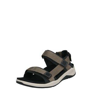 ECCO Sandály 'X-Trinsic'  černá / šedá