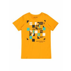 BLUE SEVEN Tričko  jasně oranžová / mix barev