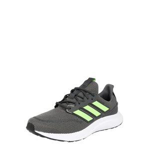 ADIDAS PERFORMANCE Běžecká obuv 'ENERGYFALCON'  svítivě zelená / šedá
