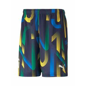 PUMA Sportovní kalhoty 'Neymar'  námořnická modř / hořčicová / zelená / královská modrá