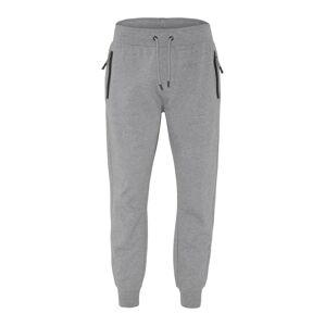 CHIEMSEE Sportovní kalhoty  šedý melír