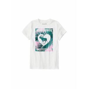Abercrombie & Fitch Tričko  bílá
