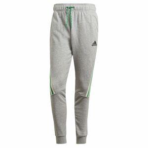 ADIDAS PERFORMANCE Sportovní kalhoty  šedý melír / světle zelená / bílá