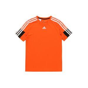 ADIDAS PERFORMANCE Funkční tričko 'B A.R.'  bílá / oranžová / černá